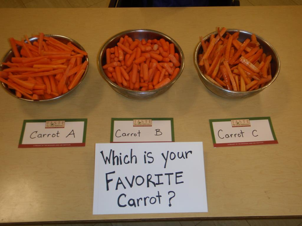 Carrot Taste Test Photo