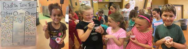 Long Lake students taste test radishes