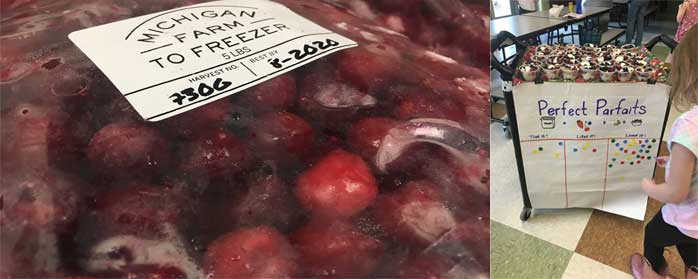 Farm to Freezer Fruit and Perfect Partfait Samples
