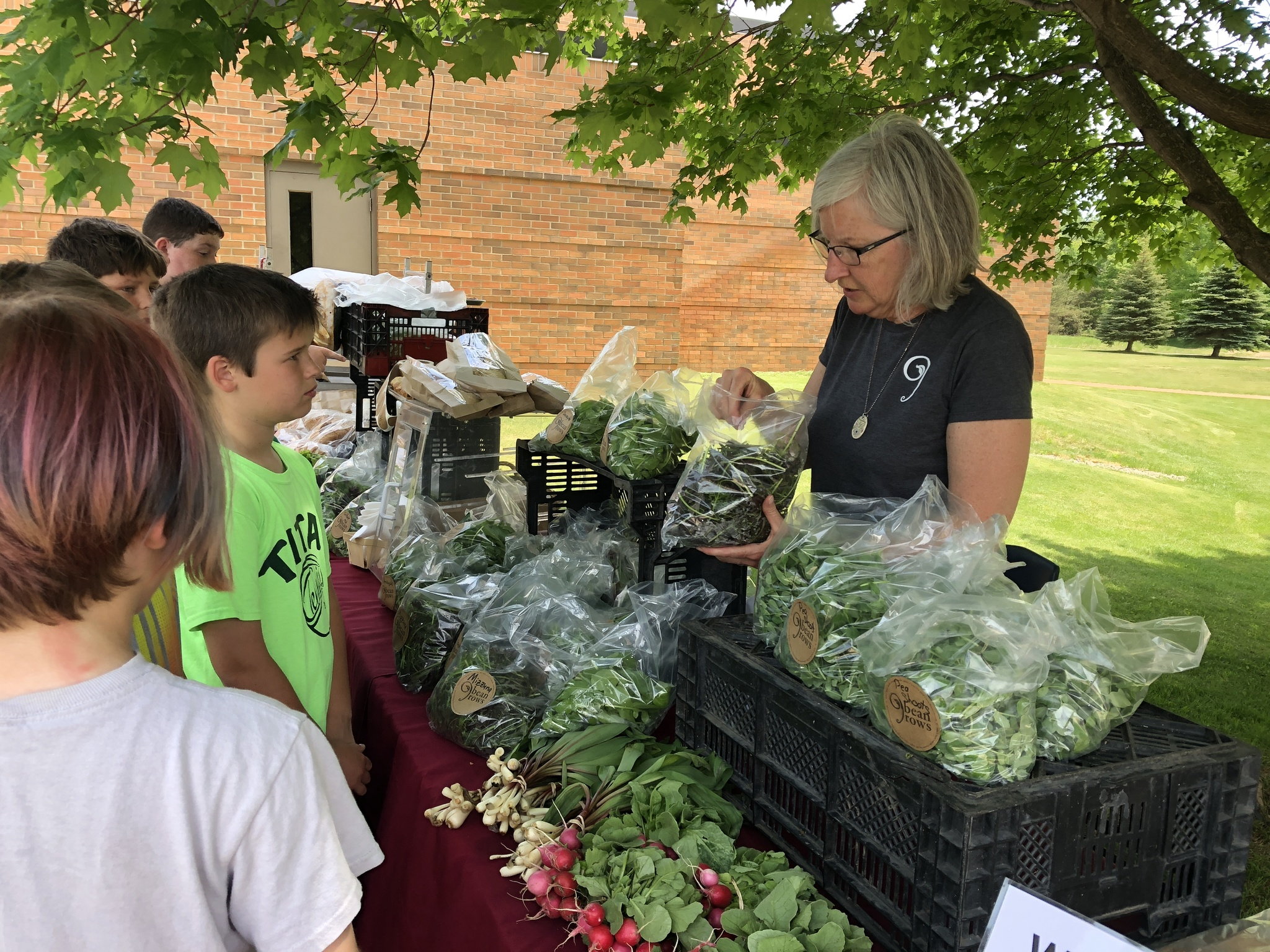 westwoods students looking at lettuce at farmer's market